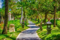 Estrada pedestre Imagens de Stock Royalty Free