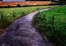 Estrada pequena que curva-se através do campo Imagens de Stock