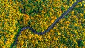 Estrada perfeita da viagem por estrada que enrola sua maneira através da floresta grossa Fotografia de Stock Royalty Free