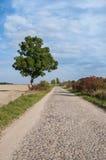 Estrada polonesa no outono Fotografia de Stock Royalty Free