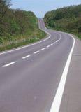 Estrada por Grama Imagem de Stock Royalty Free