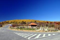 Estrada principal e casa de campo pequena com cores do outono imagem de stock royalty free