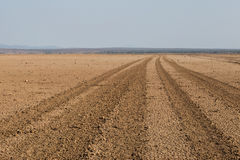 Estrada que atravessa o deserto de Amboseli, Kenya Fotos de Stock Royalty Free