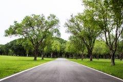 Estrada que corre através do campo verde Fotografia de Stock Royalty Free