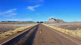 A estrada que corre através do ermo ajardina em Forest National Park hirto de medo, EUA Imagem de Stock