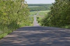 A estrada que vai para baixo, entre as árvores Imagem de Stock