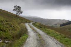 Estrada remota com a selva de Escócia fotografia de stock royalty free