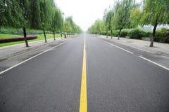 Estrada reta com salgueiros Imagens de Stock