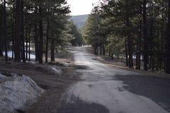 Estrada reta nas montanhas Fotos de Stock