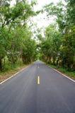 Estrada rodoviária asfaltada Imagem de Stock Royalty Free