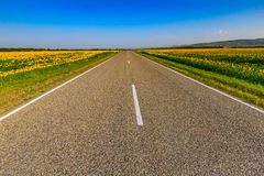 A estrada rodoviária asfaltada através dos campos Fotografia de Stock