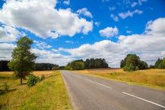 Estrada rodoviária asfaltada Paisagem com árvores Fotos de Stock Royalty Free