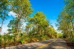 Estrada rural 8 Fotos de Stock Royalty Free