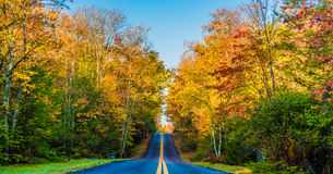 Estrada rural através da folhagem de outono imagens de stock
