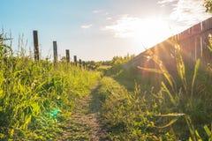 Estrada rural coberto de vegetação com a grama verde ao longo da cerca com arame farpado com um brilho brilhante do sol fotos de stock royalty free