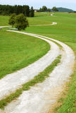 Estrada rural curvada Imagens de Stock Royalty Free