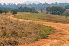 Estrada rural da curva de S no parque de Tung Salang Luang National Forest, Th Imagens de Stock