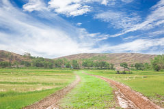 Estrada rural da vila da paisagem Fotografia de Stock Royalty Free