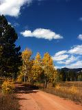 Estrada rural do país com outono foto de stock