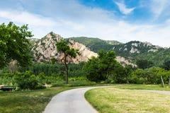 Estrada rural entre vinhedos no vale de Wachau Áustria imagem de stock
