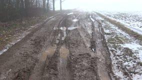 A estrada rural má na neve do inverno e a manhã escura enevoam-se filme