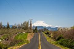 Estrada rural, Mt. Adams imagens de stock royalty free