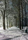Estrada rural na neve na noite Fotografia de Stock Royalty Free