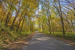 Estrada rural na queda Foto de Stock Royalty Free