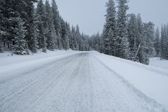 Estrada rural no inverno foto de stock royalty free