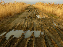 Estrada rural suja Imagens de Stock