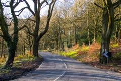 A estrada secundária. Foto de Stock Royalty Free
