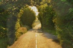 Estrada secundária Imagens de Stock Royalty Free