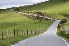 Estrada secundária Imagem de Stock Royalty Free
