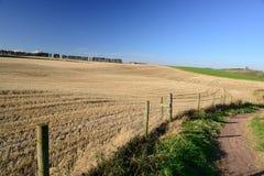 Estrada secundária ao lado do feno e do prado. Imagem de Stock Royalty Free