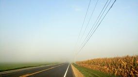 Estrada secundária com milho e fios elétricos na névoa imagens de stock