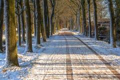 Estrada secundária congelada Fotos de Stock Royalty Free