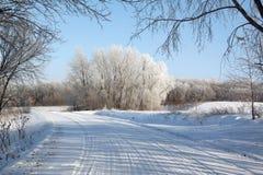 Estrada secundária do inverno Imagens de Stock Royalty Free