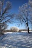 Estrada secundária do inverno Imagens de Stock