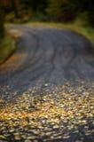 Estrada secundária do outono Fotos de Stock Royalty Free