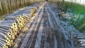Estrada secundária e árvores abatidas no tempo de inverno Paisagem do inverno Estrada firewood Silhueta do homem de negócio Cower video estoque