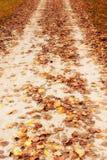 Estrada secundária em autumn_2 fotografia de stock royalty free