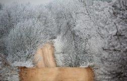 Estrada secundária gelado da manhã do outono imagem de stock