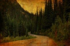 Estrada secundária Grunge Imagem de Stock