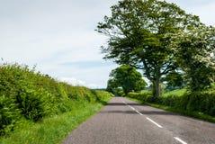 Estrada secundária inglesa imagem de stock