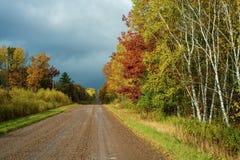 Estrada secundária molhada, outono foto de stock royalty free