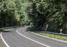 Estrada secundária no concreto da floresta com sinais do limite de velocidade do dia ensolarado de uma hora de 50 quilômetros Fotos de Stock Royalty Free