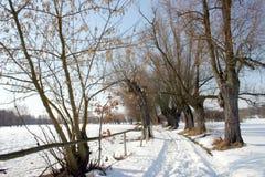 Estrada secundária no inverno imagem de stock