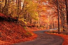 Estrada secundária no outono Fotos de Stock Royalty Free