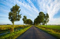 Estrada secundária no verão Foto de Stock Royalty Free