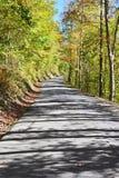 Estrada secundária que corre através de uma floresta Fotos de Stock Royalty Free
